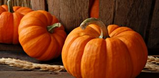 indian-pumpkin-foods